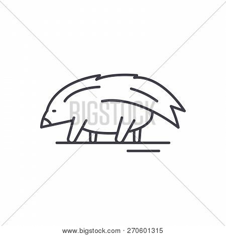 Porcupine Line Icon Concept. Porcupine Vector Linear Illustration, Symbol, Sign