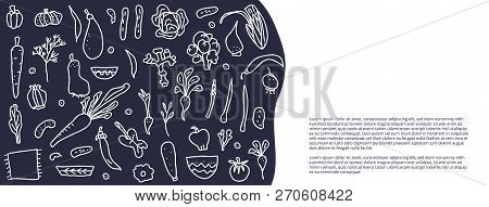 Social Media Banners Template Of Vector Vegetables. Collection Of Veg In Doodle Style Isolated On Wh