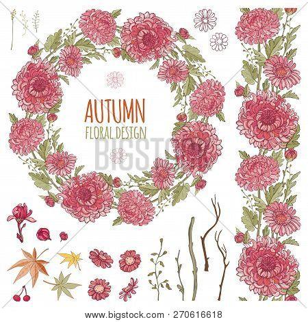 Red Chrysanthemums Set. Flowers Garland, Border Editable Brush, Floral Compositions For Design. Temp