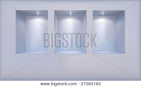 Vector shelves consecrated soffit