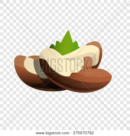Brazil Nut Icon. Cartoon Of Brazil Nut Vector Icon For Web Design