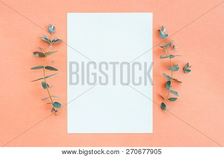 Eucalyptus Branches And Blank Paper Sheet With Copy Space, On Peach Canvas Background.