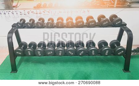 Dumbbell The device in the anaerobic exercise. poster