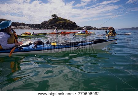 Pacific Ocean Off Of Brookes Peninsula, Vancouver Island, Bc, July 17, 2018: Kayakers In Colorful Ka