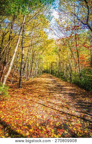Scenic Views Along The Virginia Creeper Trail