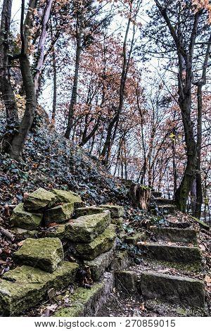 Broken Stoned Footpath In The Autumn Forest, Nitra, Slovak Republic. Seasonal Natural Scene.