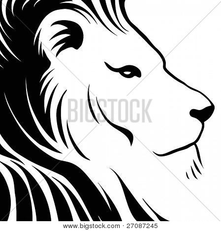 Lion head drawing