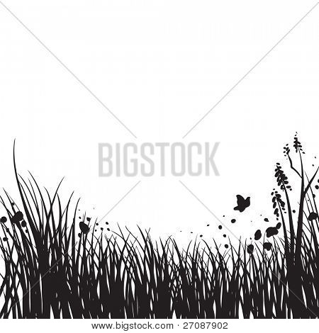 Spring grass silhouette
