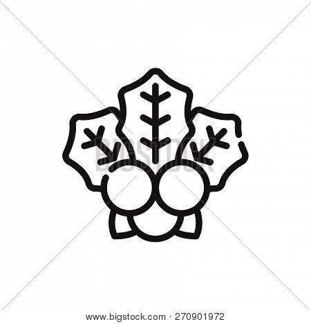 Mistletoe Icon Isolated On White Background. Mistletoe Icon In Trendy Design Style. Mistletoe Vector