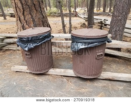 Brown Trash Cans In The Woods With Trees And Pine Needles