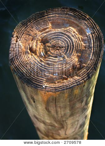 Stock Photo Of A Pier Piling Grain