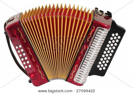 Accordion. Isolated
