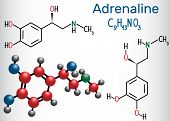 Adrenaline (epinephrine) molecule .  It is a hormone, neurotransmitter, and medication. Structural chemical formula and molecule model. Vector illustration poster