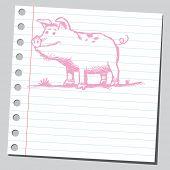 Scribble pig poster