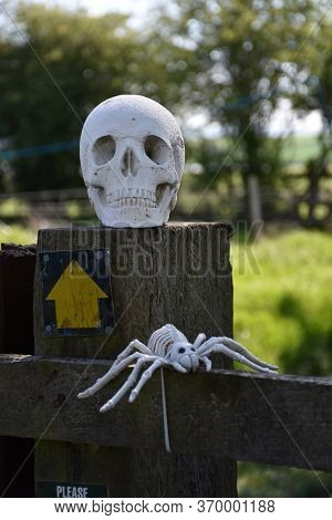 Skeleton Head And Spider On A Fence Post Along The Coast To Coast Walk.