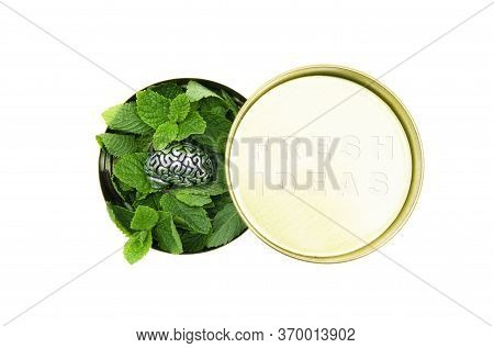 Round Tin Box Full Of Fresh Green Mint Leaves And A Steel Copy Of Human Brain On Top. Fresh Ideas Te
