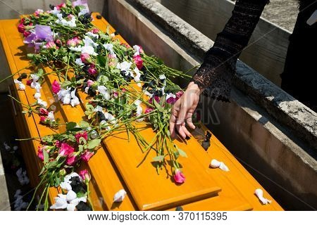 Hands Of Women Holding A Rose,put On The Coffin,mourning The Dead