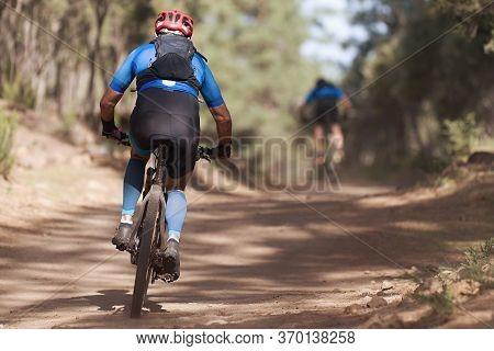 Athletes Mountain Biking On Forest Trail, Mountain Bike Race