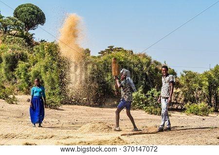 Gondar, Ethiopia - Feb 06, 2020: Ethiopian Peasants Working In The Fields During The Harvest, Thresh