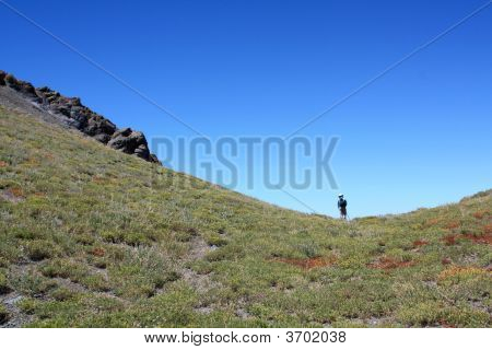 Hiker In Saddle