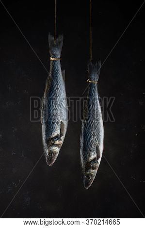 Two Fresh Seabass Fishes Hang On A Rope On A Black Background. Seafood Concept.