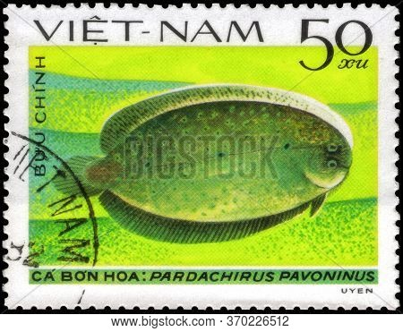 Saint Petersburg, Russia - May 31, 2020: Postage Stamp Issued In The Vietnam With The Image Of The P
