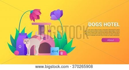 Cats Hotel Cartoon Horizontal Banner. Pet Daycare Service Vector Illustration. Welcoming Place For A