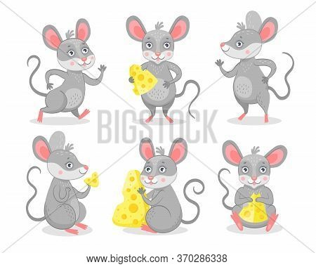 Funny Mice Characters Flat Icon Set. Cute Happy Mouse Eating Cheese Isolated Vector Illustration Col