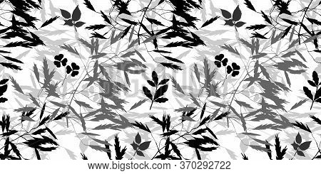 Vector Herbal Pattern. Seamless Floral Background For Packaging, Textiles, Wallpaper. Monochrome Flo