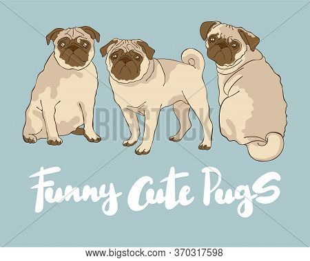 Funny Cute Pugs. Lettering. Dogs Pugs. Cartoon Animals. Set. Isolated Vector Objects.