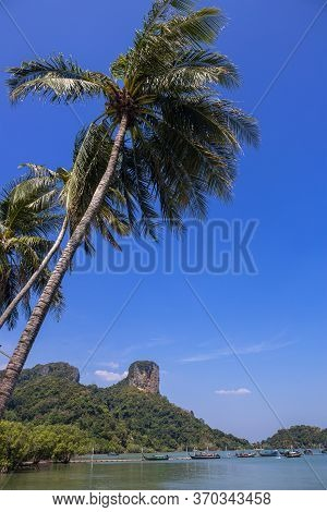 Panoramic View Of East Railay Beach, Krabi Town, Thailand. View From The Shadow Of Tree. Landscape W
