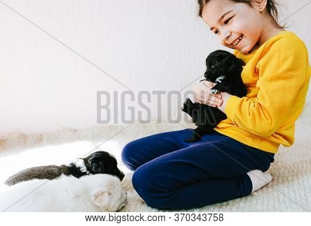 Image Of Happy Child Playing At Home With Little Dogs. Pretty Little Girl With The Puppy. Adorable K