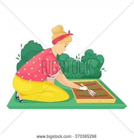 The Girl Is Sitting On Her Knees And Loosening A Bed Of Plantings. Vector Illustration. Seedling Pla
