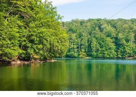 Lake Among Beech Forest Of Vihorlat Mountains. Calm Nature Landscape In Summer. Sky And Trees Reflec