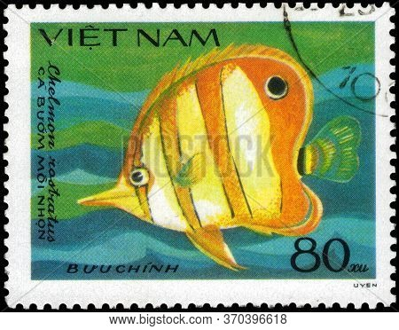 Saint Petersburg, Russia - May 31, 2020: Postage Stamp Issued In The Vietnam With The Image Of The C