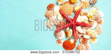 Red Starfish Against The Background Of Seashells. Summer Time Or Hello Summer. Close-up
