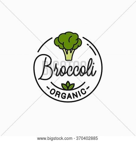 Broccoli Vegetable Logo. Round Linear Of Broccoli
