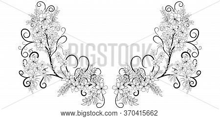 Beautiful Flower Ornament Coloring Book For Adults. Vector Frame Romantic Floral Illustration. Weddi