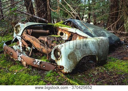 A Vintage Automobile Rusts In A Forest Of Douglas Fir Trees In Northern Gulf Islands, British Columb