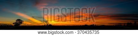 Panorama Silhouette Tree In Africa With Sunset.tree Silhouetted Against A Setting Sun.dark Tree On O