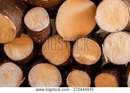 Cassava, Also Called Manioc, Yuca, Balinghoy, Mogo, Mandioca, Kamoteng Kahoy, Tapioca And Manioc Roo
