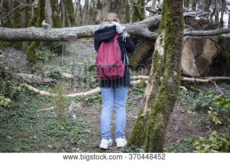 A Girl With A Backpack Stands Among The Plants. A Walk Through The Relict Forest Overgrown With Cana