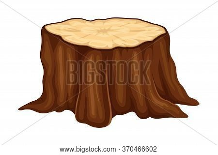 Brown Fresh Cut Stump Or Stub As Forest Element Vector Illustration