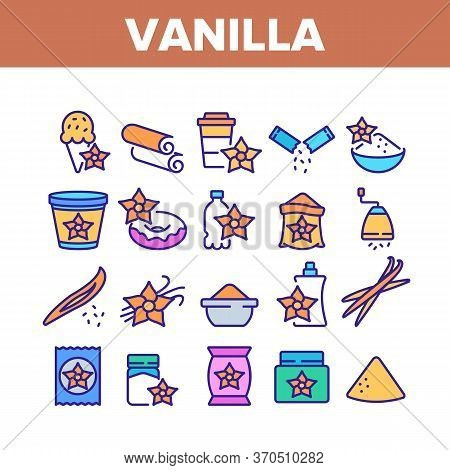 Vanilla Flower Collection Icons Set Vector. Vanilla Stick Ingredient For Ice Cream And Coffee, Donut