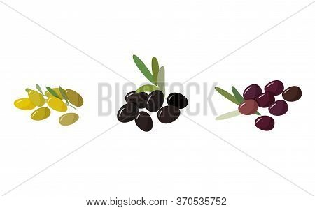Fresh Collection Of Different Colors Olives. Green, Black And Purple Berries. Fresh Cooking Collecti