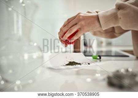 Close Up Of Womans Hands Putting Grinded Weed On A Paper While Emptying Out Red Marijuana Grinder. G