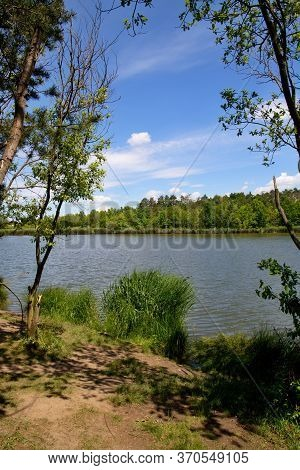 Water Surface, Trees And Bushes On A Background Of Blue Sky With White Clouds