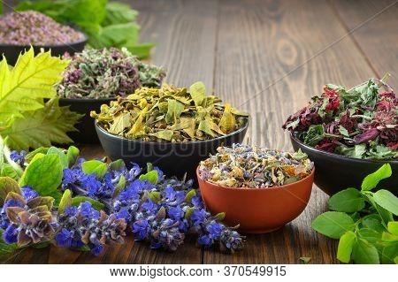 Bowls Of Dry Medicinal Herbs - Mistletoe, Wild Marjoram, Heather. Calendula Flowers, Bilberry Twigs