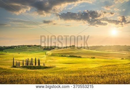 Sunset Landscape In Maremma Countryside. Rolling Hills And Cypress Trees. Bibbona. Tuscany, Italy, E