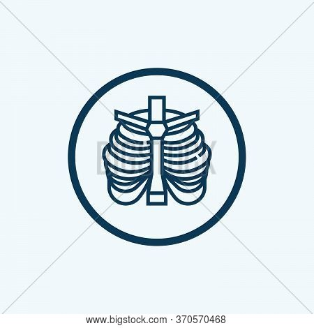 Thorax Icon Isolated On White Background From Anatomy Collection. Thorax Icon Trendy And Modern Thor